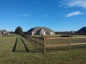 The new homestead